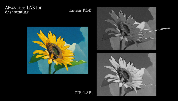A comparison of two grayscaled images of a sunflower